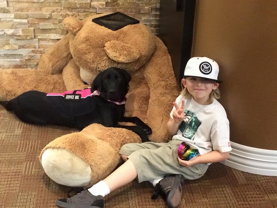 Stella Hauser, Registered Service Dog at Lakefront Family Dentistry