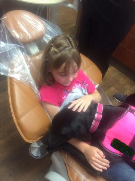 kids dentist in lake elsinore ca and therapy dog