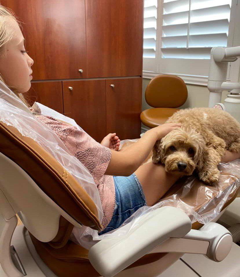kids dentist - children's dental - pediatric dentistry - dental therapy dog